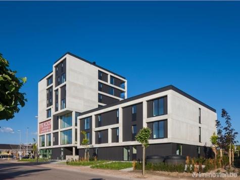 Kantoor te koop in Hasselt (RAJ20010)