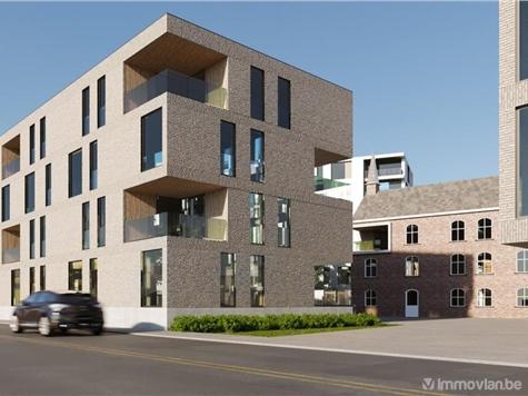Handelspand te koop in Beringen (RAK01847)
