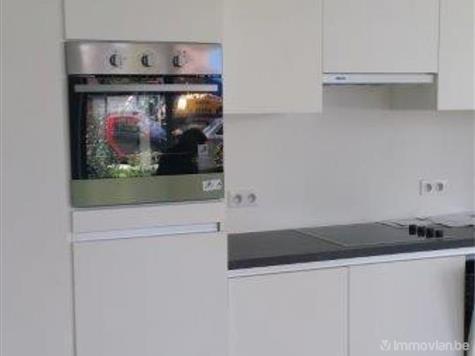 Flat - Apartment for rent in Berchem (RAJ53343) (RAJ53343)
