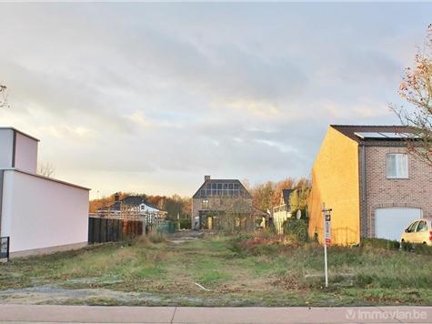 Terrain à bâtir à vendre à Opglabbeek (RAP83288)