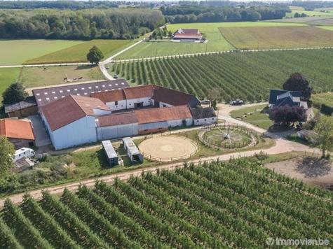 Huis gemengd gebruik te koop in Tielt-Winge (RAP63138)
