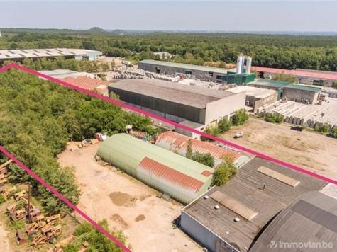 Industrial building for rent in Maasmechelen (RAP14511)