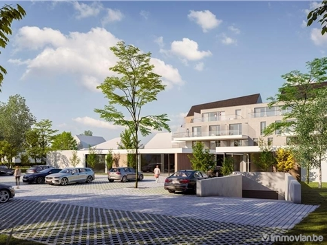 Flat - Apartment for sale in Opglabbeek (RAP79326)