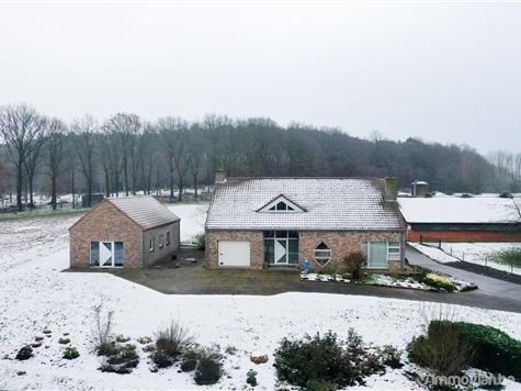 Farming Site for sale in Schaffen (RAQ21801)