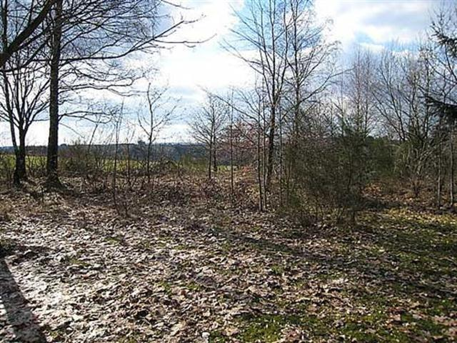Land for housing for sale - 6666 Wibrin (VAB81491)