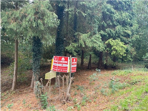 Land for sale in Erquelinnes (VAL91875)
