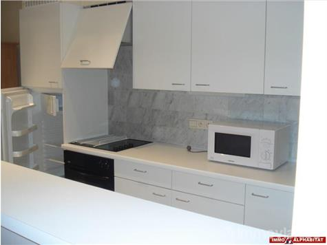 Ground floor for rent in Sint-Lambrechts-Woluwe (VAE94076)