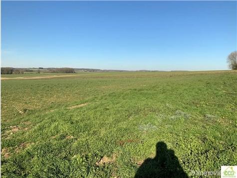 Farmland for sale in Biesme (VAL98398)