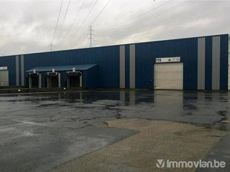 Industrial building for rent in Sint-Niklaas (VWC00384) (VWC00384)
