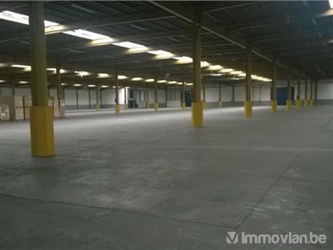 Industrial building for rent in Sint-Niklaas (VWC00383) (VWC00383)