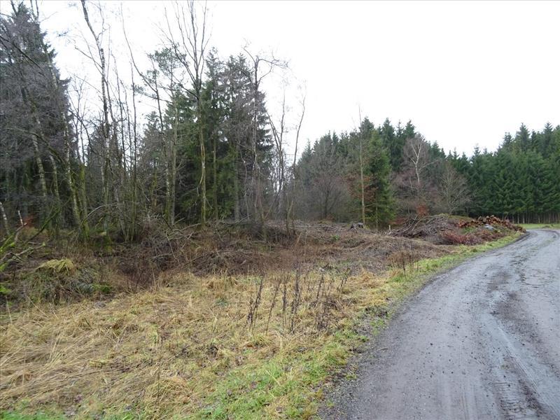 Farmland for sale - 6690 Vielsalm (VWC53992)