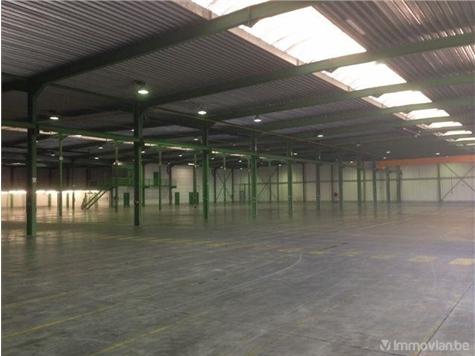 Industrie te huur in Herentals (RAO53633)