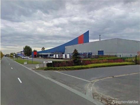 Industrial building for rent in Bornem (RAO53536)