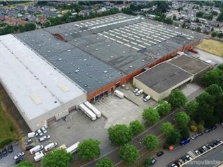 Industrial building for rent Mechelen (RWB74579)