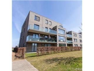 Appartement à vendre Wijnegem (RWC16251)