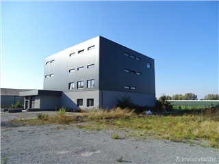 Industrial building for rent Affligem (RAI61439)