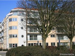 Appartement à vendre Willebroek (RAC01507)