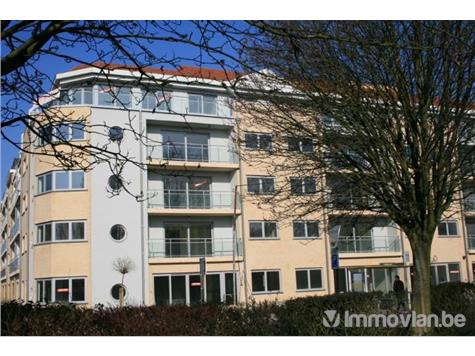 Duplex for sale - 2830 Willebroek (RAC01239)