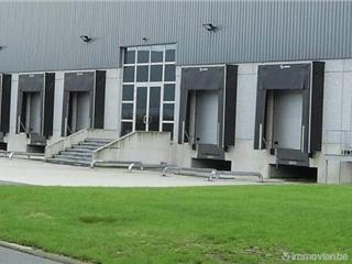 Industrie te huur Bornem (RAI84501)