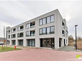 Flat - Apartment for sale Borsbeek (RAQ39744)