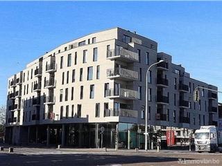 Flat - Apartment for sale Maasmechelen (RAP81470)