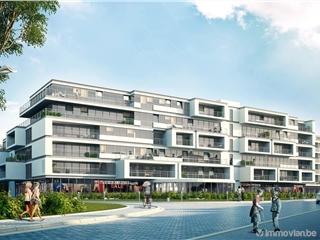 Flat - Apartment for sale Denderleeuw (RAI86805)