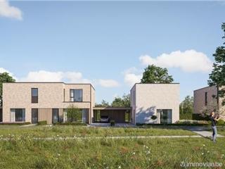 Maison à vendre Zonhoven (RAP77106)
