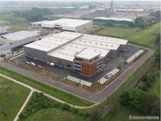 Industrie te huur Evergem (RAK31308)