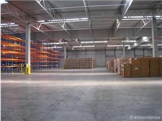 Industrial building for rent Desteldonk (RAK31241)