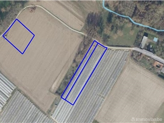 Terrain agricole à vendre Kortessem (RAQ24986)