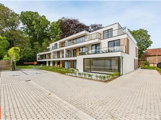 Flat - Apartment for sale Zwevezele (RAK69312)