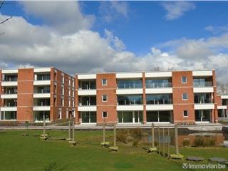 Appartement te koop Oostmalle (RAG58723)