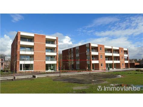Flat for sale - 2390 Oostmalle (RAG58720)