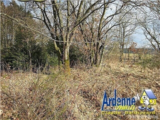 Development site for sale Houffalize (VAB81487)