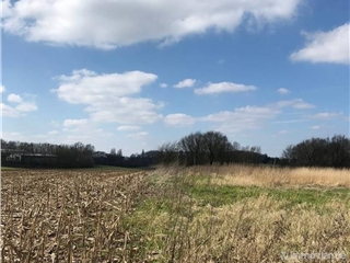 Farmland for sale Overijse (VAH17493)