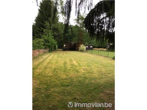 Terrain à bâtir à vendre - 5550 Membre (VAD83119)