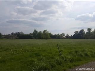 Terrain à bâtir à vendre Vaux-et-Borset (VAM08031)