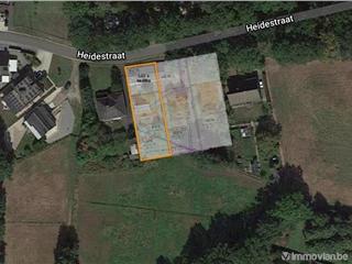 Terrain à bâtir à vendre Heusden-Zolder (RAP63995)