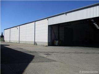 Industrial building for rent Kontich (RAP56828)