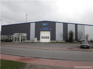Surface industrielle à louer Stekene (RAQ02707)
