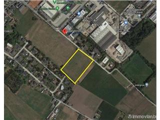 HandelsFonds te koop Sint-Katelijne-Waver (RAP54615)