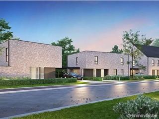 Maison à vendre Lommel (RAZ82479)